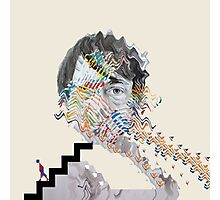 Animal Collective - Panda Bear Photographic Print
