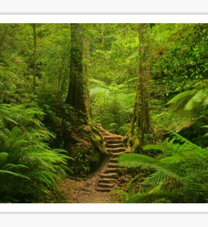 Magic Rainforest Sticker