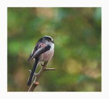 Long-tailed Tit Baby Tee