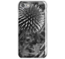 Globe thistle iPhone Case/Skin