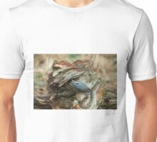 Eurasian Nuthatch and Seed Unisex T-Shirt