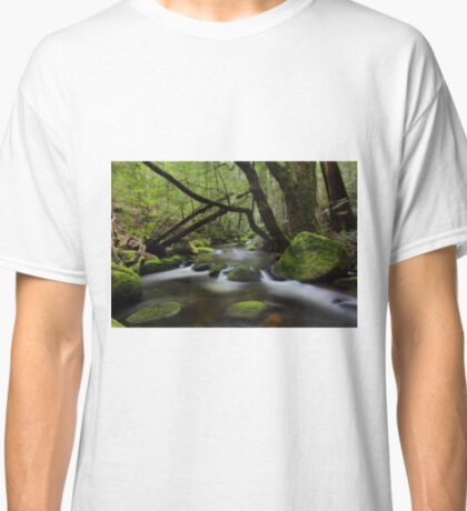 Evaparating  forests  Classic T-Shirt