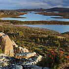 Blue peacks area Tasmania by Donovan wilson
