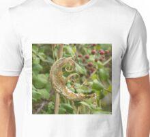 Dried Teasel Leaf Unisex T-Shirt
