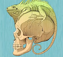 colorful illustration with iguana and skull by Nadiiaz