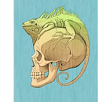 colorful illustration with iguana and skull Photographic Print