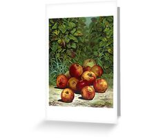 Apples - 1868 - Currier & Ives Greeting Card