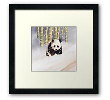 Panda In The Snow Framed Print