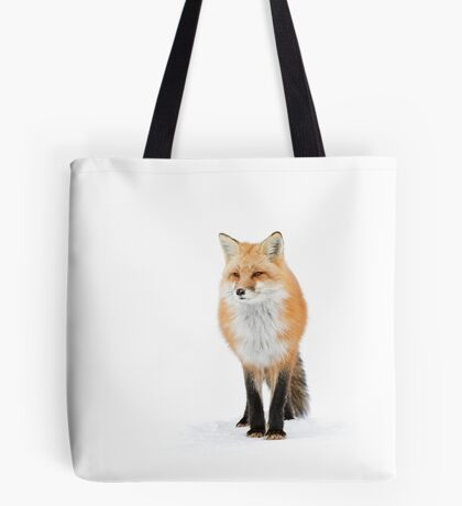 Red fox pose - Algonquin Park Tote Bag