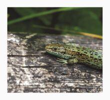 Common Lizard One Piece - Short Sleeve