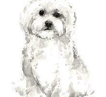 Maltese abstract dog poster by Joanna Szmerdt