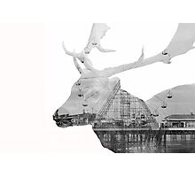 Deer Multiple Exposure Photographic Print