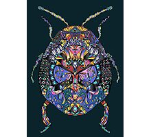 Patterned Scarab Photographic Print