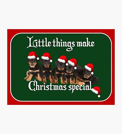 Little Things Make Christmas Special Vector Photographic Print