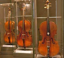 Medicean Strings by phil decocco