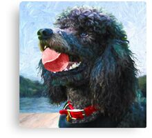 """Ranger with Ball"" Canvas Print"