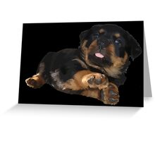 Cute Rottweiler Puppy Vector Greeting Card