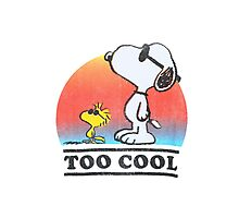 """Peanuts """"too cool"""" snoopy Photographic Print"""