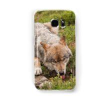 Wolf drinking Samsung Galaxy Case/Skin