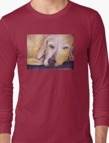 Let Sleeping Dogs Lie Long Sleeve T-Shirt