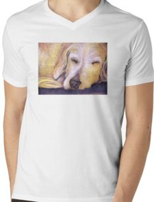 Let Sleeping Dogs Lie Mens V-Neck T-Shirt