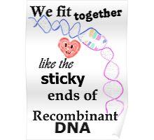 Biology Pun Poster