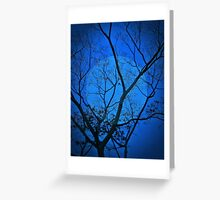 Moonlight Bird  (about a bird and a tree) (please see description) Greeting Card