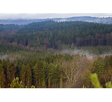 Forest of Dean.. Photographic Print