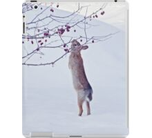 Crabapple Snow Bunny iPad Case/Skin