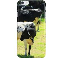 Bull and Cows in a Pasture iPhone Case/Skin