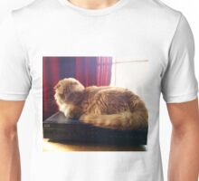 I Decide What to Watch Unisex T-Shirt
