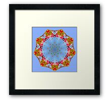 Mill Pond Mandala Framed Print