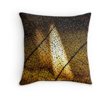 Flame's Reflection Throw Pillow