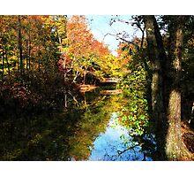 Autumn Park With Bridge Photographic Print