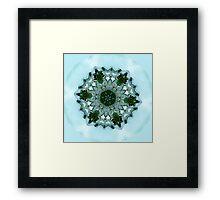 Frog Mandala Framed Print