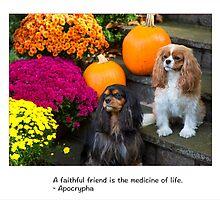 A Faithful Friends Cavalier King Charles by daphsam