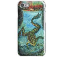 Frog Pond iPhone Case/Skin