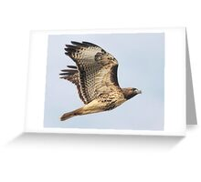 The Other Red Baron Greeting Card