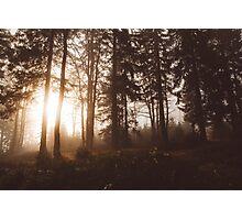 Reborn Photographic Print