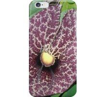 The Fractal Flower iPhone Case/Skin