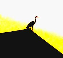 golden heron by ariyahjoseph