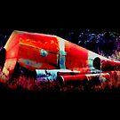 fallen satellite by ariyahjoseph