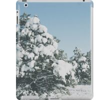 Winter Forest 2 iPad Case/Skin