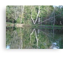 The Natural Mirror  Canvas Print