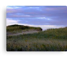 Dune Access Canvas Print