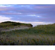 Dune Access Photographic Print