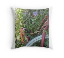 A  RIDE INTO THE PAST Throw Pillow