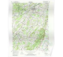 New York NY Pine Bush 136802 1956 24000 Poster
