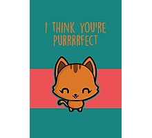 I think you're purrrrfect Photographic Print