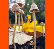 Mellow Yellow Fungi Friends Unisex T-Shirt